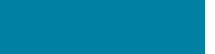 Besure, Pro's Company logo